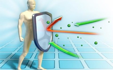Иммунную систему лучше держать занятой
