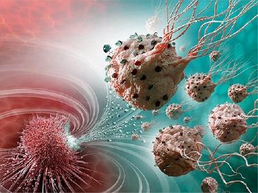 Бактерии-перевозчики смогут транспортировать лекарство в нужную часть опухоли