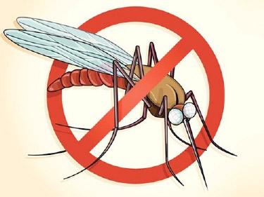 В 12 районах Греции запретили донорство из-за 4 случаев малярии
