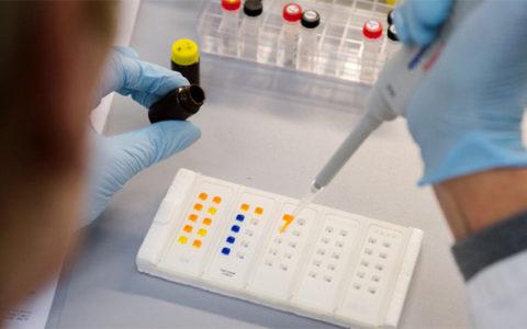 В Москве зафиксированы двое зараженных вирусом Зика