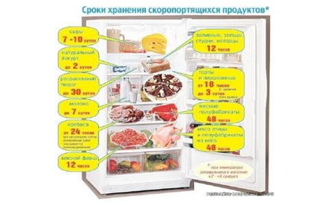 Эксперты рассказали, как долго продукты остаются безопасными в холодильнике