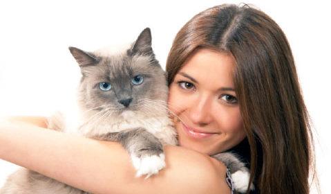 Паразит, заражающий кошек, может превратить предменструальный синдром в сущий кошмар