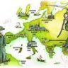 Ученые назвали истинные причины распространения чумы в Средние века