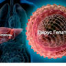 Российские изобретатели знают, как вылечить гепатит В