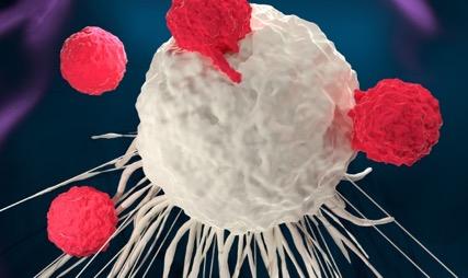 Онкологи натравили на раковые клетки вирус
