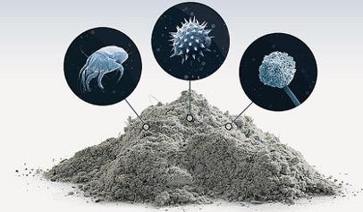 Пыль резервуар антибиотикоустойчивых генов